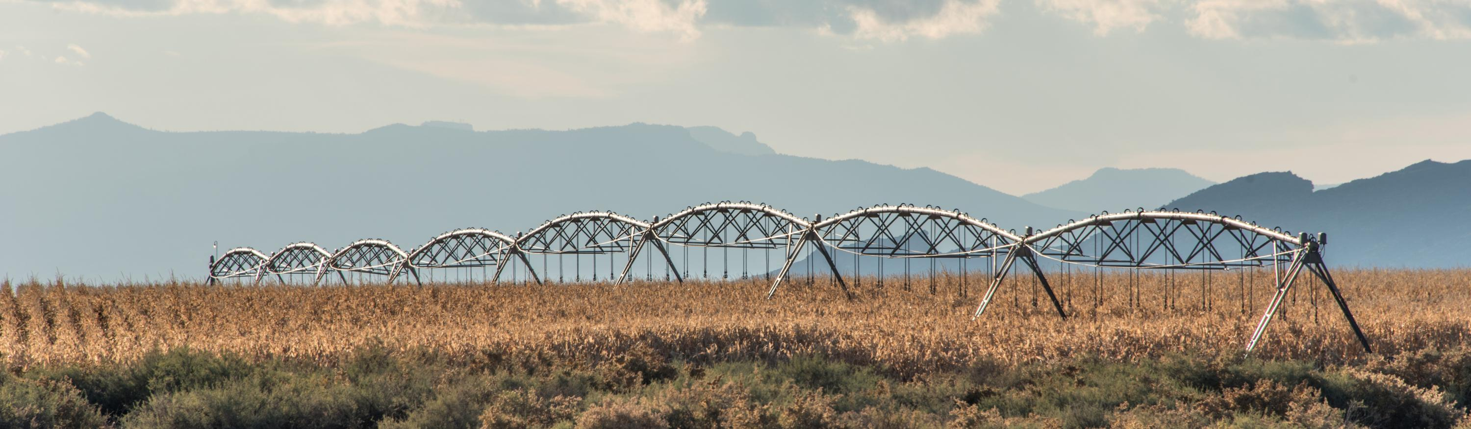 Agriculture in San Juan County, NM