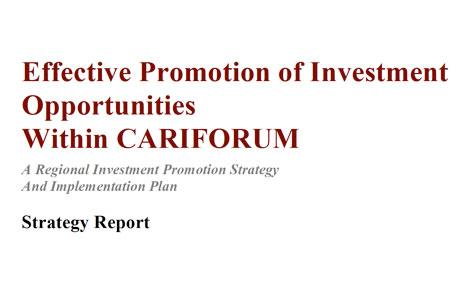 Caribbean FDI Report