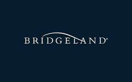 Bridgeland Slide Image